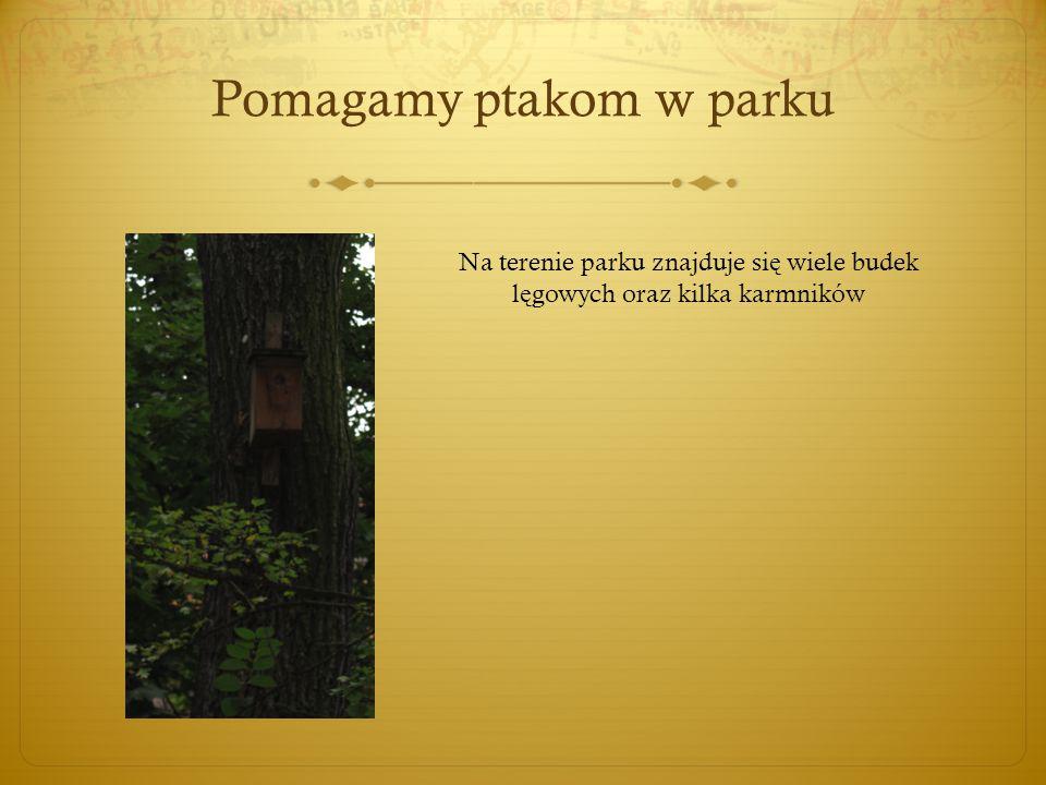 Pomagamy ptakom w parku Na terenie parku znajduje si ę wiele budek l ę gowych oraz kilka karmników