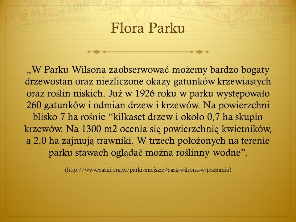 Flora Parku Najcenniejszymi drzewami w parku s ą : platan o obwodzie 410 cm i wierzba (430 cm), chronione jako pomniki przyrody.