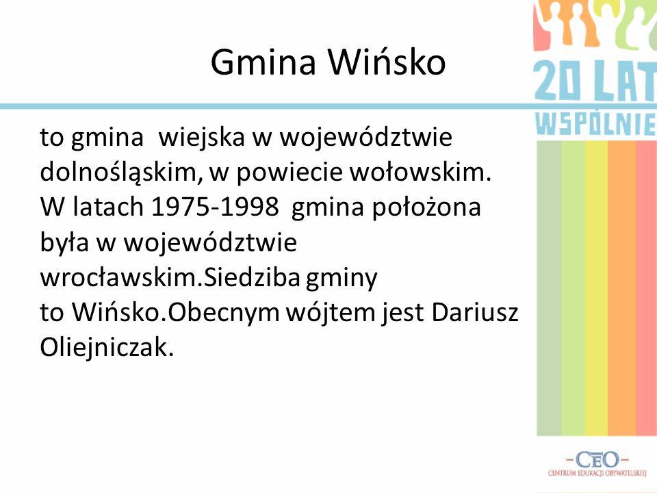 to gmina wiejska w województwie dolnośląskim, w powiecie wołowskim. W latach 1975-1998 gmina położona była w województwie wrocławskim.Siedziba gminy t