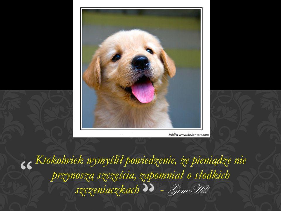 Ktokolwiek wymyślił powiedzenie, że pieniądze nie przynoszą szczęścia, zapomniał o słodkich szczeniaczkach - Gene Hill