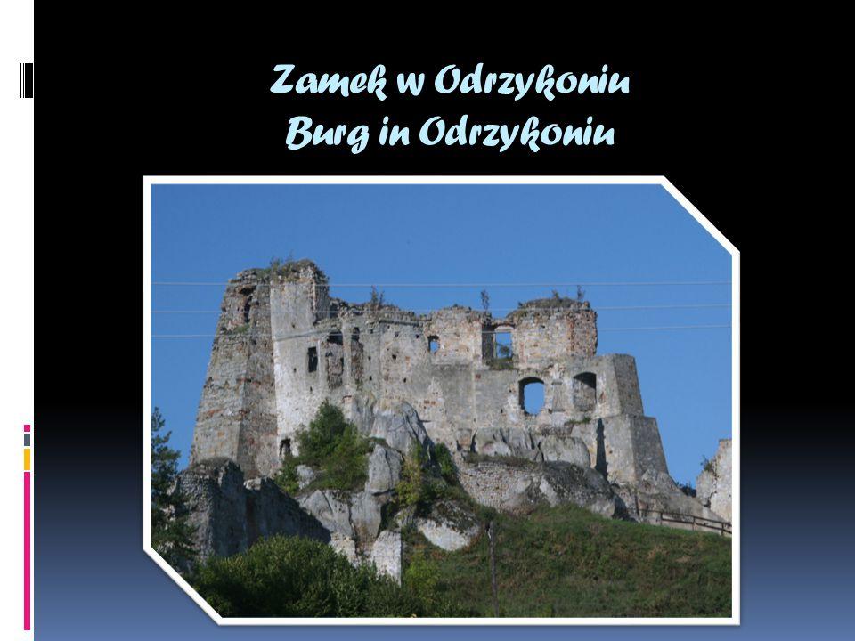 Zamek w Odrzykoniu Burg in Odrzykoniu