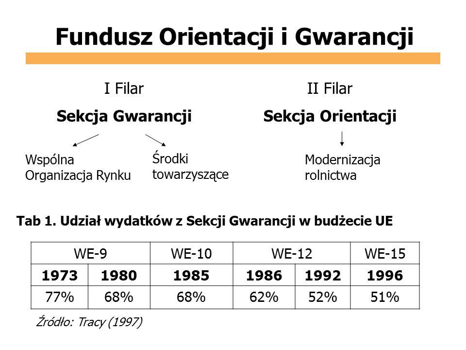 Fundusz Orientacji i Gwarancji I Filar Sekcja Gwarancji II Filar Sekcja Orientacji Wspólna Organizacja Rynku Środki towarzyszące Modernizacja rolnictw