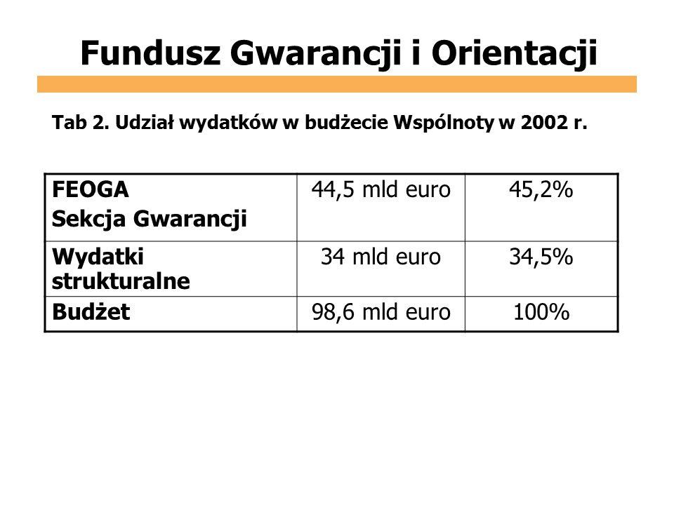Fundusz Gwarancji i Orientacji FEOGA Sekcja Gwarancji 44,5 mld euro45,2% Wydatki strukturalne 34 mld euro34,5% Budżet98,6 mld euro100% Tab 2. Udział w