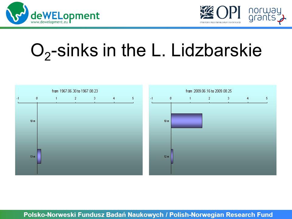 Polsko-Norweski Fundusz Badań Naukowych / Polish-Norwegian Research Fund O 2 -sinks in the L.
