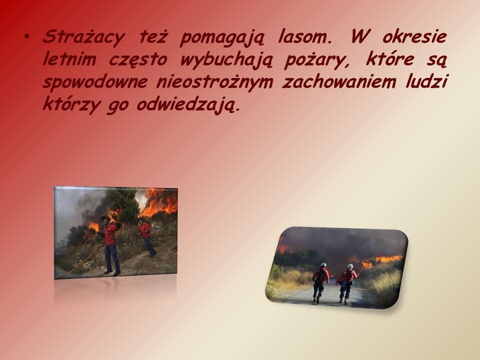 Strażacy też pomagają lasom. W okresie letnim często wybuchają pożary, które są spowodowne nieostrożnym zachowaniem ludzi którzy go odwiedzają.