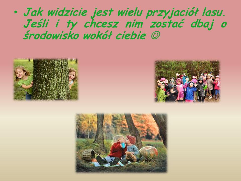 Jak widzicie jest wielu przyjaciół lasu. Jeśli i ty chcesz nim zostać dbaj o środowisko wokół ciebie