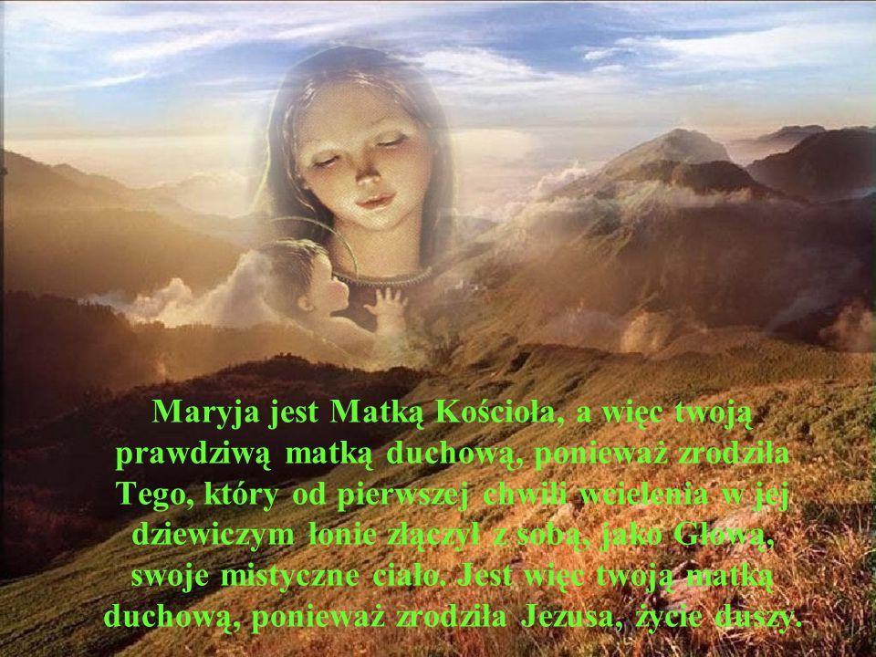 Maryja jest Matką Kościoła, a więc twoją prawdziwą matką duchową, ponieważ zrodziła Tego, który od pierwszej chwili wcielenia w jej dziewiczym łonie z
