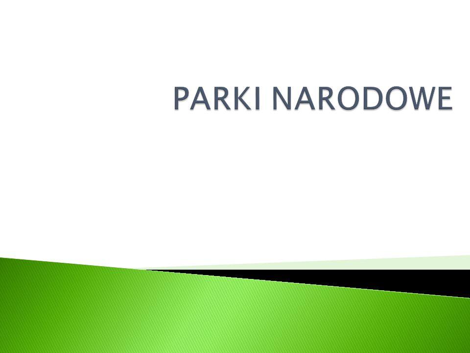  Park narodowy – forma ochrony przyrody występująca w większości państw świata; obszar powołany przez władzę szczebla krajowego celem ochrony występującej tam przyrody ożywionej.