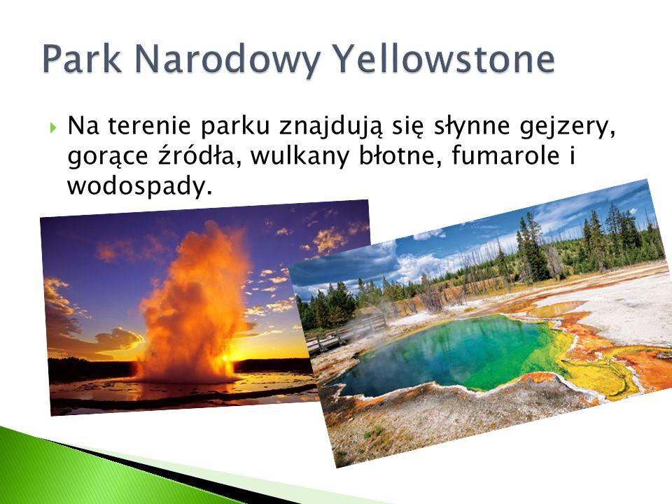  Na terenie parku znajdują się słynne gejzery, gorące źródła, wulkany błotne, fumarole i wodospady.