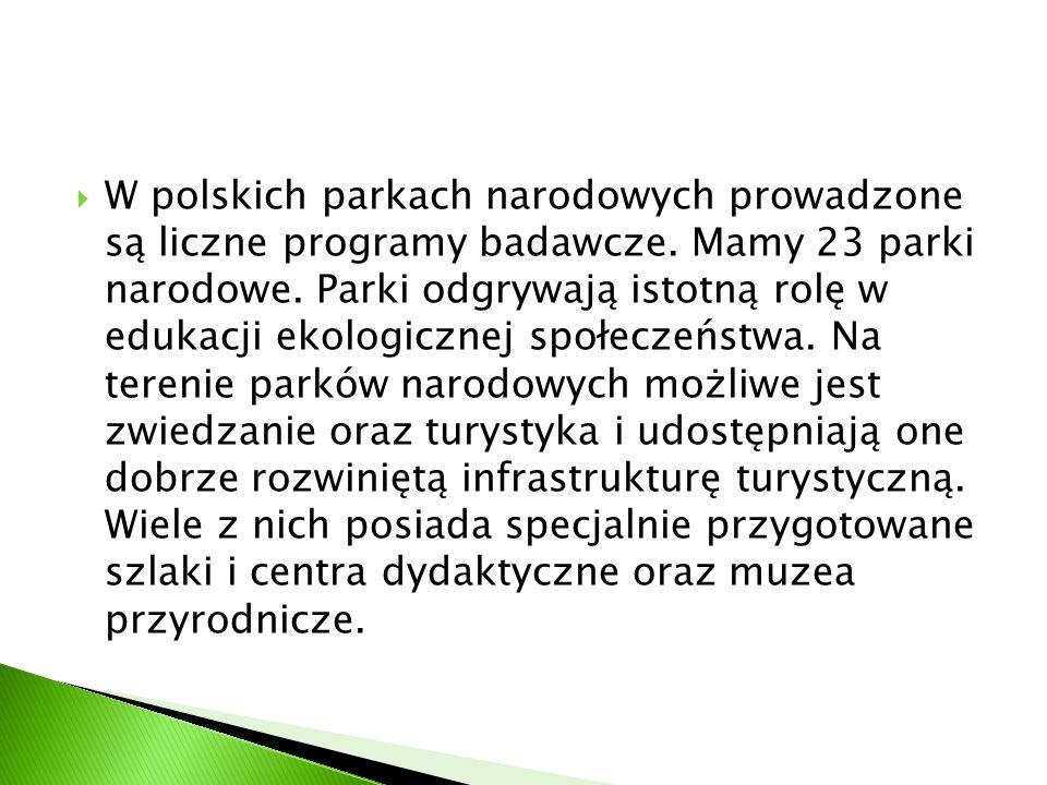  W polskich parkach narodowych prowadzone są liczne programy badawcze. Mamy 23 parki narodowe. Parki odgrywają istotną rolę w edukacji ekologicznej s