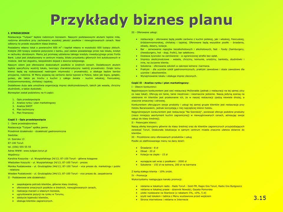 3.15 Przykłady biznes planu