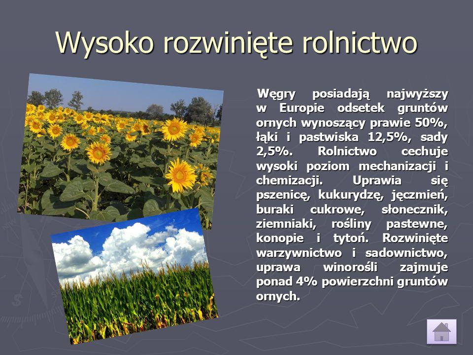 Wysoko rozwinięte rolnictwo Węgry posiadają najwyższy w Europie odsetek gruntów ornych wynoszący prawie 50%, łąki i pastwiska 12,5%, sady 2,5%. Rolnic