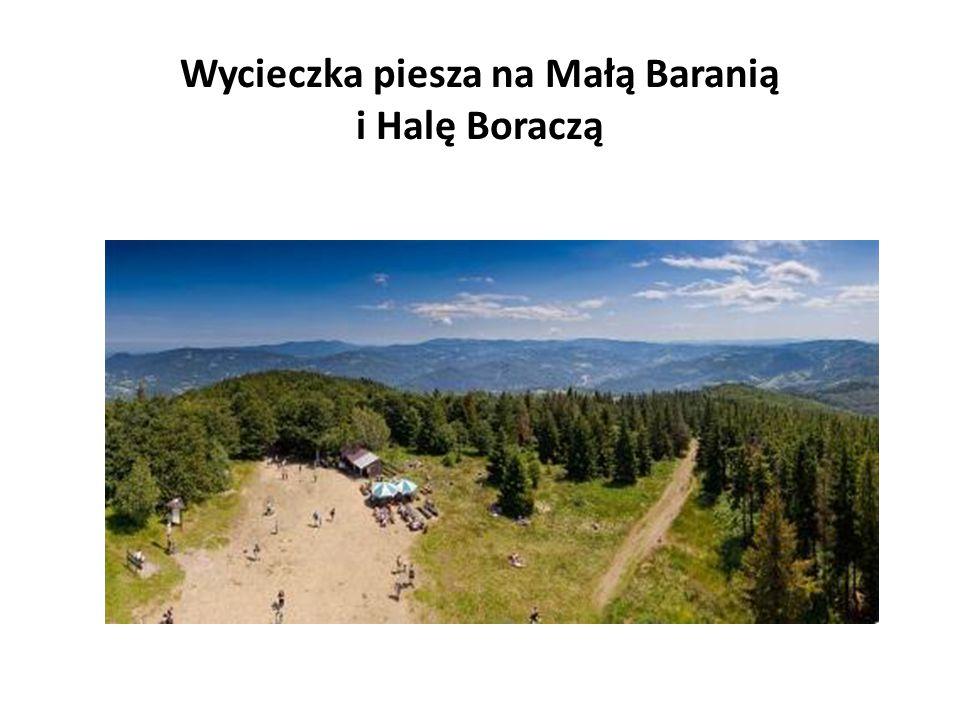 Wycieczka piesza na Małą Baranią i Halę Boraczą