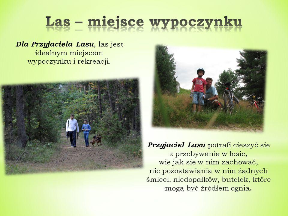 Przyjaciel Lasu wie, że w lesie zwierzęta czują się bezpiecznie, dlatego przebywając w nim nie hałasuje, nie płoszy zwierząt, nie niszczy ich naturalnego środowiska życia.