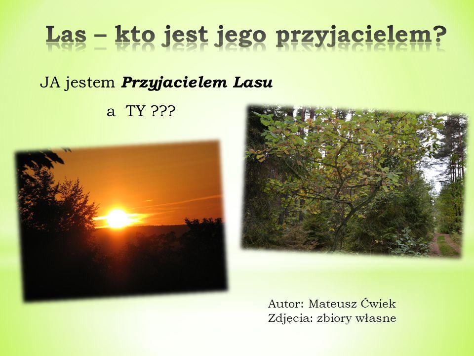 JA jestem Przyjacielem Lasu Autor: Mateusz Ćwiek Zdjęcia: zbiory własne a TY ???
