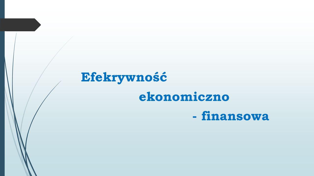 Efekrywność ekonomiczno - finansowa