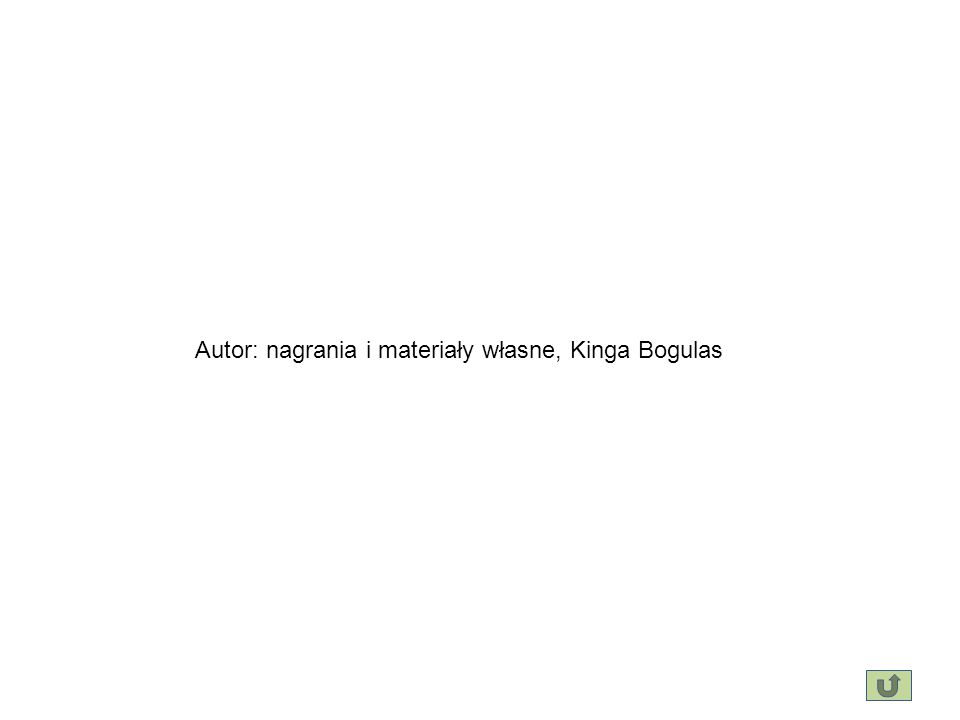 Autor: nagrania i materiały własne, Kinga Bogulas