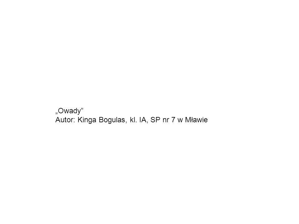 """""""Owady"""" Autor: Kinga Bogulas, kl. IA, SP nr 7 w Mławie"""