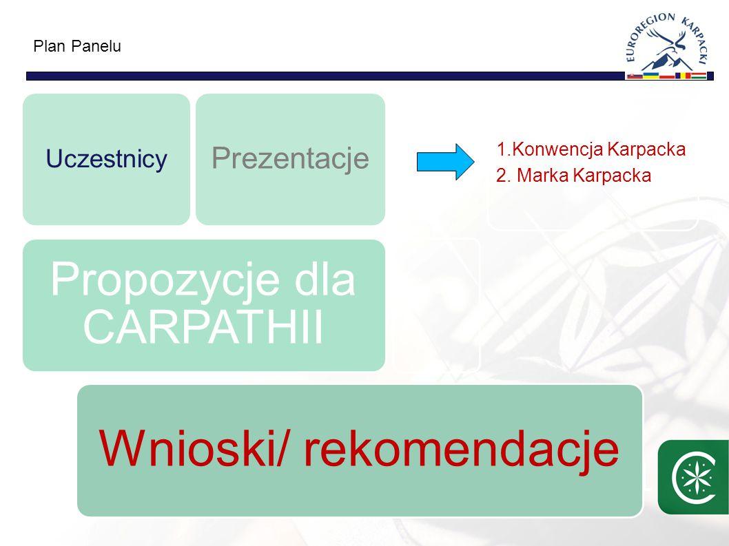 1 Wnioski/ rekomendacje Propozycje dla CARPATHII Uczestnicy Prezentacje 1.Konwencja Karpacka 2.