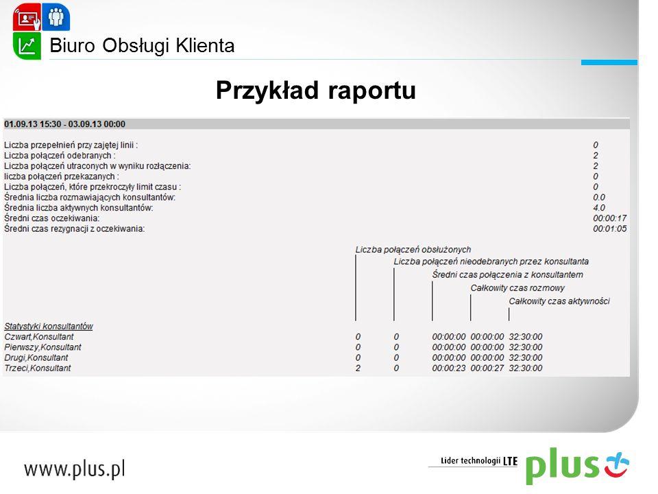 Przykład raportu