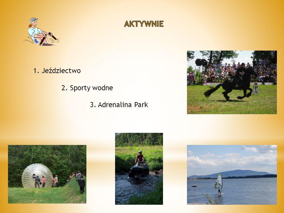 1. Jeździectwo 2. Sporty wodne 3. Adrenalina Park