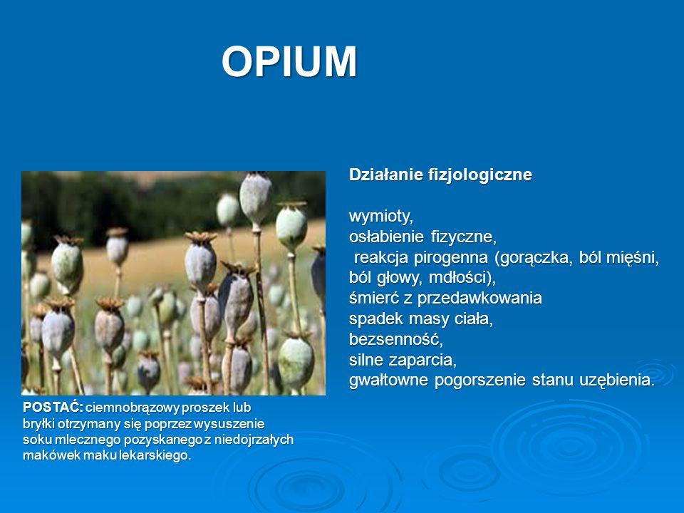 OPIUM Działanie fizjologiczne wymioty, osłabienie fizyczne, reakcja pirogenna (gorączka, ból mięśni, ból głowy, mdłości), reakcja pirogenna (gorączka,