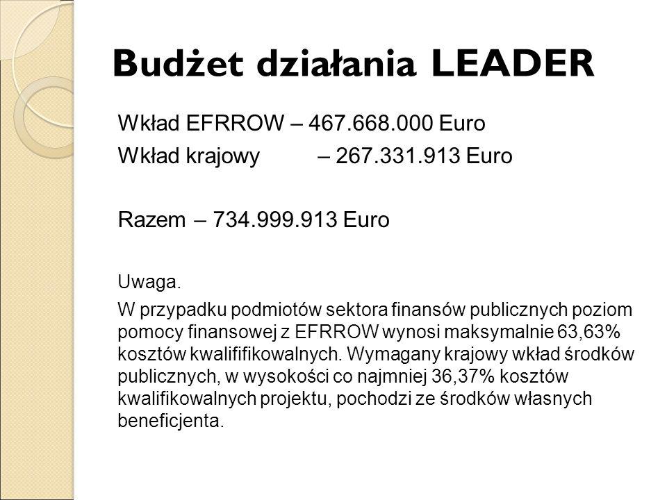 Budżet działania LEADER Wkład EFRROW – 467.668.000 Euro Wkład krajowy – 267.331.913 Euro Razem – 734.999.913 Euro Uwaga. W przypadku podmiotów sektora