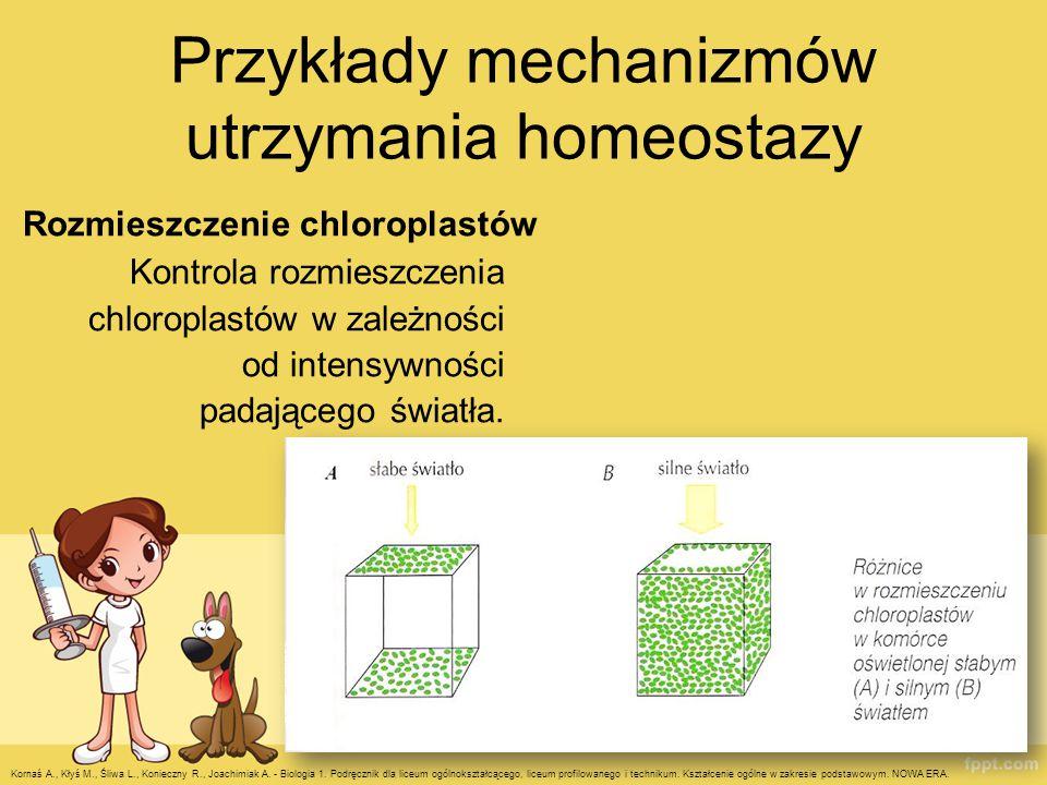 Przykłady mechanizmów utrzymania homeostazy Rozmieszczenie chloroplastów Kontrola rozmieszczenia chloroplastów w zależności od intensywności padająceg