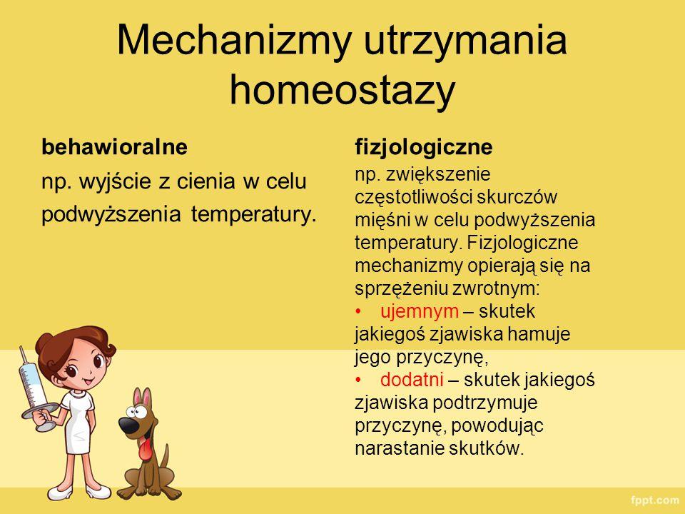Mechanizmy utrzymania homeostazy behawioralne np. wyjście z cienia w celu podwyższenia temperatury. fizjologiczne np. zwiększenie częstotliwości skurc