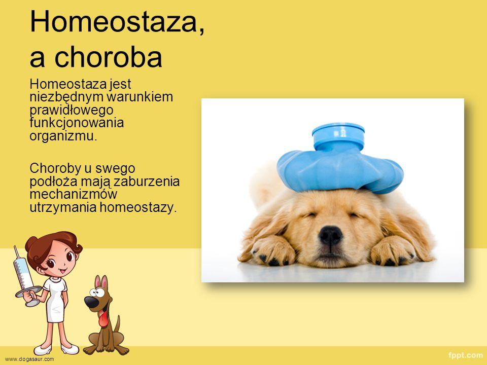 Homeostaza, a choroba Homeostaza jest niezbędnym warunkiem prawidłowego funkcjonowania organizmu. Choroby u swego podłoża mają zaburzenia mechanizmów
