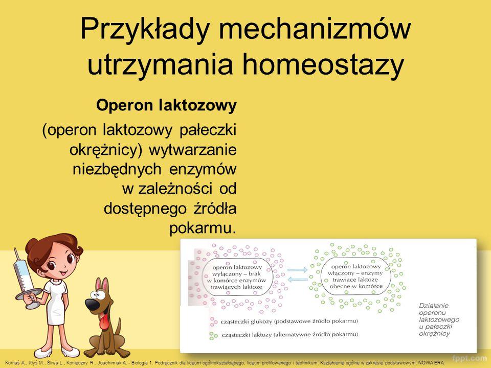 Przykłady mechanizmów utrzymania homeostazy Operon laktozowy (operon laktozowy pałeczki okrężnicy) wytwarzanie niezbędnych enzymów w zależności od dos