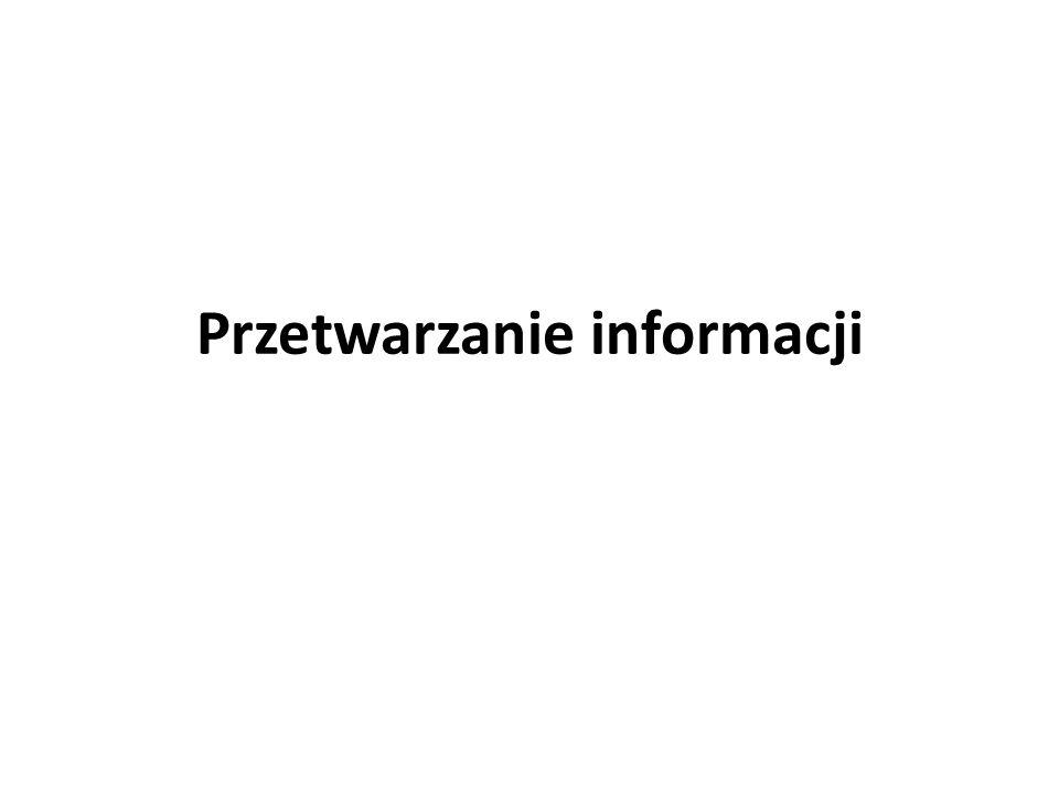 Przetwarzanie informacji polega na generowaniu informacji na podstawie innej, wcześniej wygenerowanej i zgromadzonej informacji utrwalonej na jakimś nośniku materialnym, wyrażonej w pewnym języku w ramach określonego systemu informacyjnego.