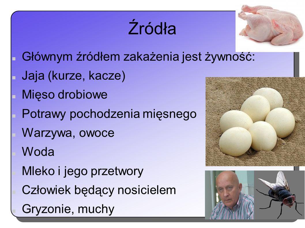 Źródła Głównym źródłem zakażenia jest żywność: Jaja (kurze, kacze) Mięso drobiowe Potrawy pochodzenia mięsnego Warzywa, owoce Woda Mleko i jego przetw