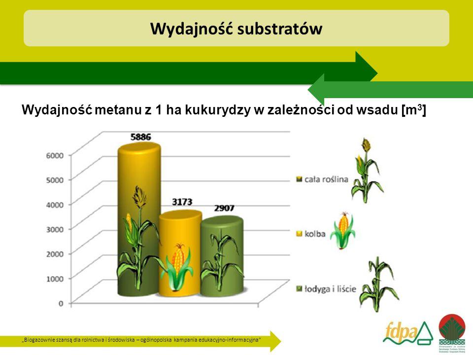 """""""Biogazownie szansą dla rolnictwa i środowiska – ogólnopolska kampania edukacyjno-informacyjna Wydajność metanu z 1 ha kukurydzy w zależności od wsadu [m 3 ] Wydajność substratów"""