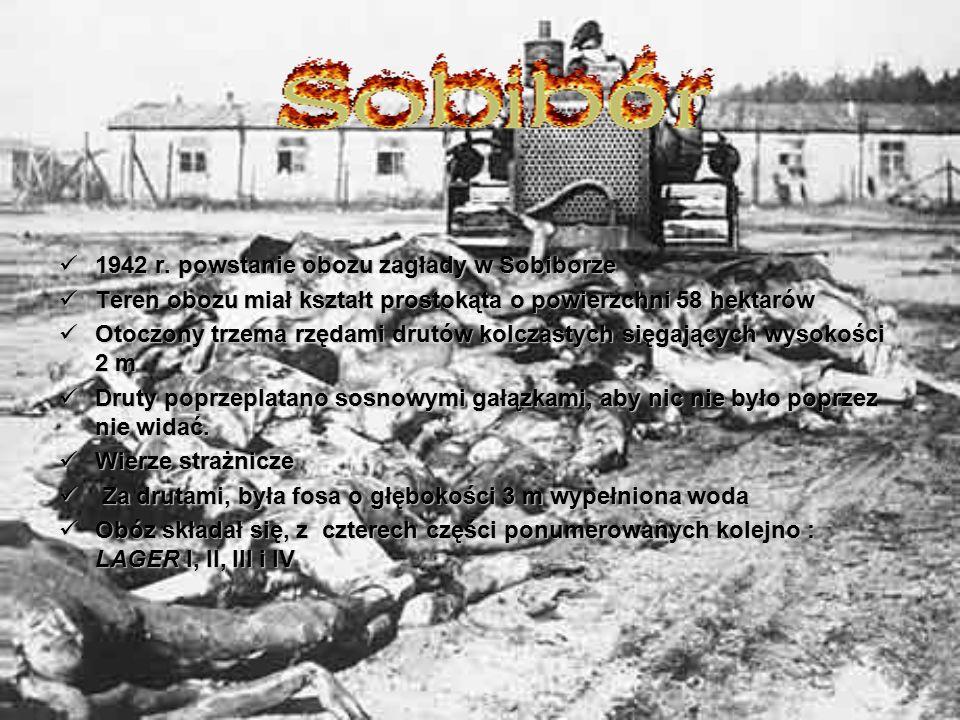 1942 r. powstanie obozu zagłady w Sobiborze 1942 r. powstanie obozu zagłady w Sobiborze Teren obozu miał kształt prostokąta o powierzchni 58 hektarów
