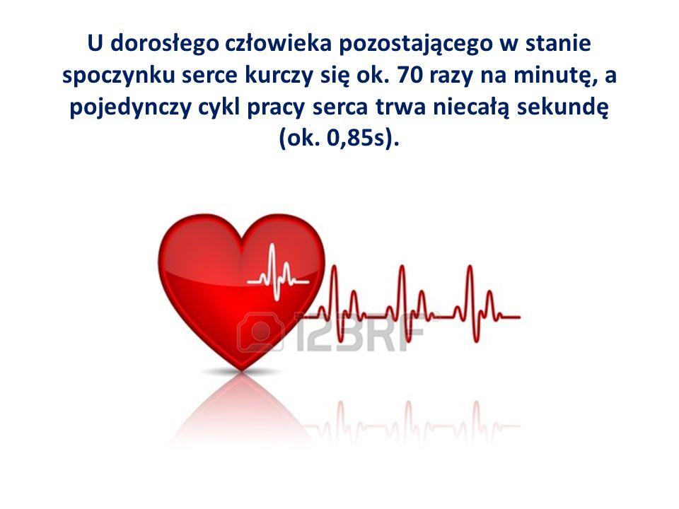 U dorosłego człowieka pozostającego w stanie spoczynku serce kurczy się ok. 70 razy na minutę, a pojedynczy cykl pracy serca trwa niecałą sekundę (ok.