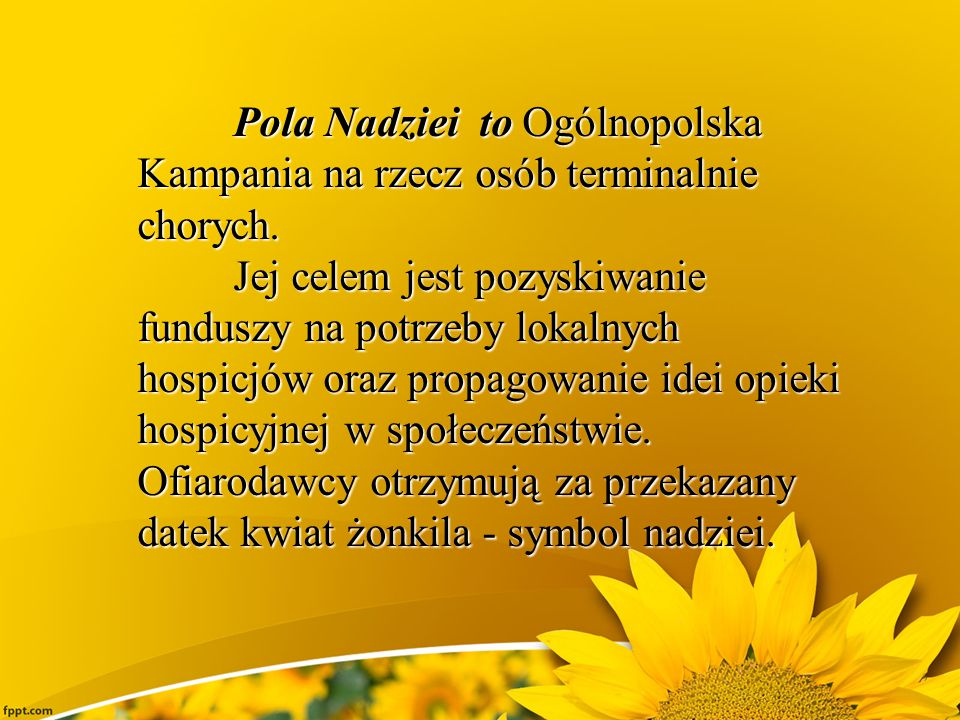 Pola Nadziei to Ogólnopolska Kampania na rzecz osób terminalnie chorych.
