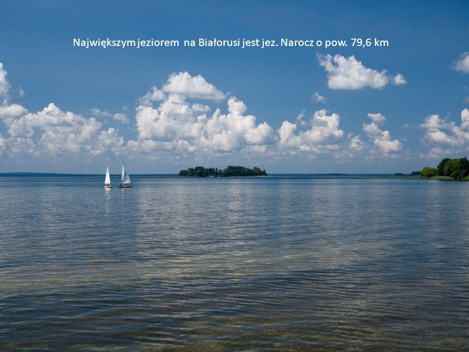 Największym jeziorem na Białorusi jest jeź.Narocz o pow.