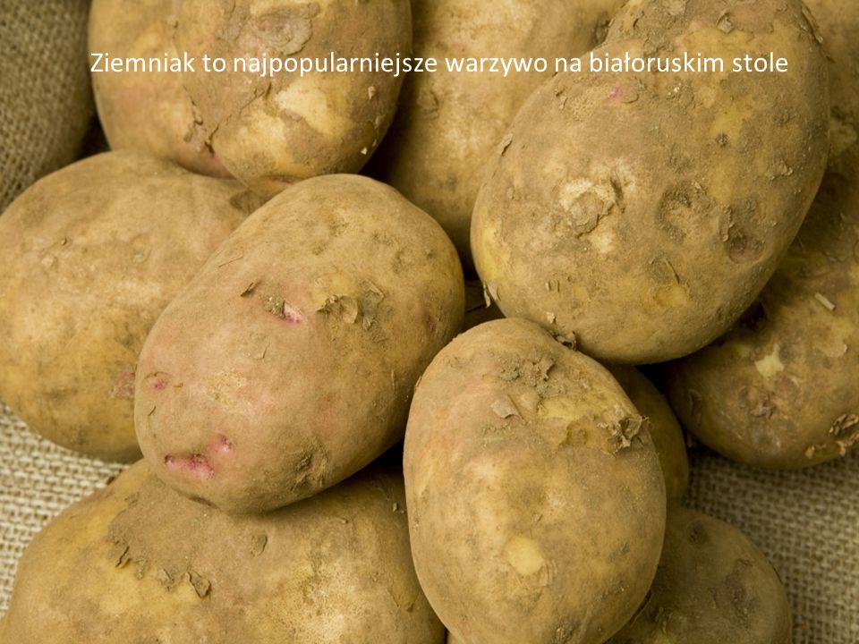 Ziemniak to najpopularniejsze warzywo na białoruskim stole