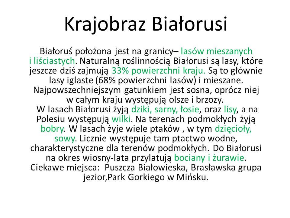Krajobraz Białorusi Białoruś położona jest na granicy– lasów mieszanych i liściastych.