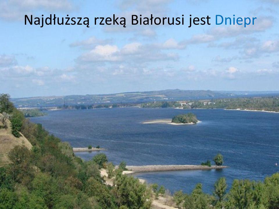 Najdłuższą rzeką Białorusi jest Dniepr