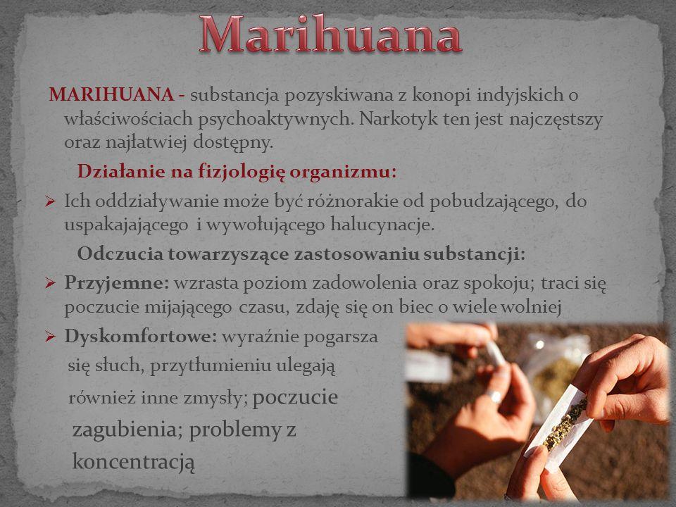 MARIHUANA - substancja pozyskiwana z konopi indyjskich o właściwościach psychoaktywnych. Narkotyk ten jest najczęstszy oraz najłatwiej dostępny. Dział