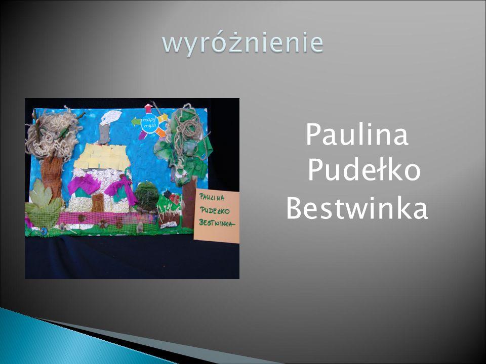 Paulina Pudełko Bestwinka