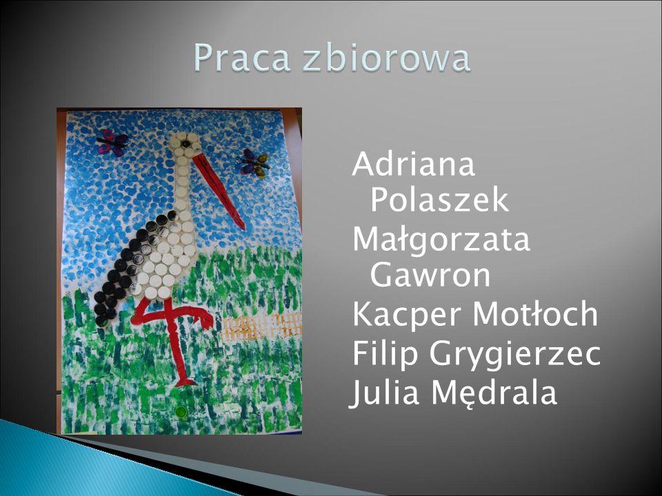 Adriana Polaszek Małgorzata Gawron Kacper Motłoch Filip Grygierzec Julia Mędrala