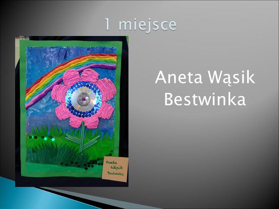 Aneta Wąsik Bestwinka