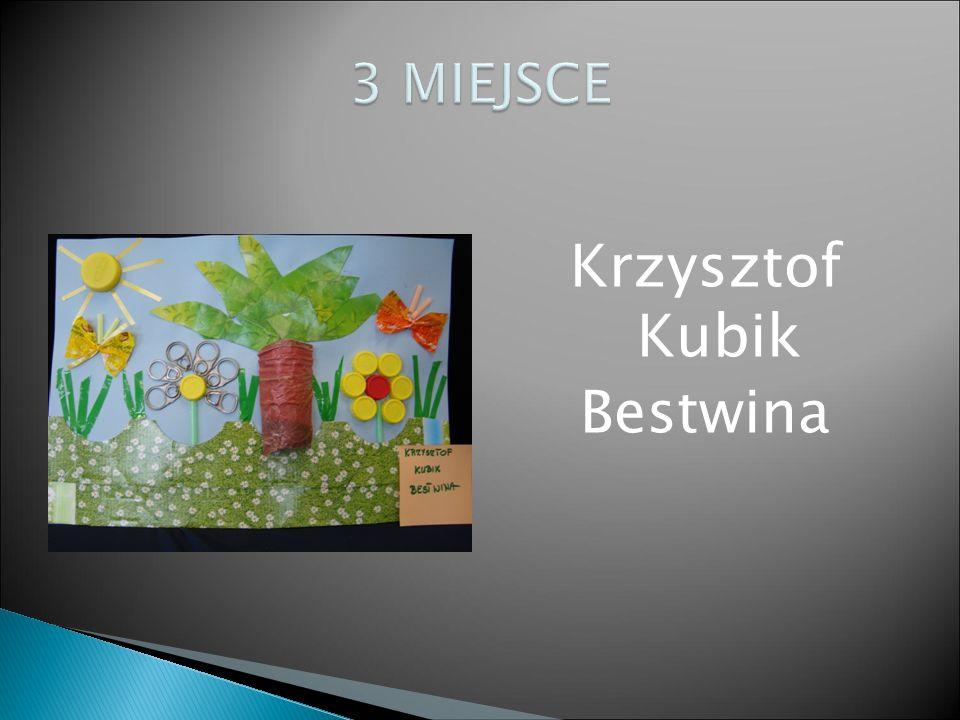 Krzysztof Kubik Bestwina