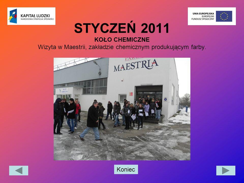 Koniec STYCZEŃ 2011 KOŁO CHEMICZNE Wizyta w Maestrii, zakładzie chemicznym produkującym farby.