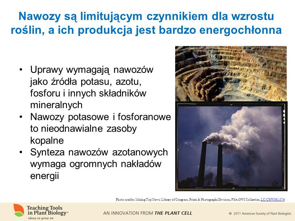 Nawozy są limitującym czynnikiem dla wzrostu roślin, a ich produkcja jest bardzo energochłonna Uprawy wymagają nawozów jako źródła potasu, azotu, fosforu i innych składników mineralnych Nawozy potasowe i fosforanowe to nieodnawialne zasoby kopalne Synteza nawozów azotanowych wymaga ogromnych nakładów energii Photo credits: Mining Top News; Library of Congress, Prints & Photographs Division, FSA-OWI Collection, LC-USW361-374LC-USW361-374