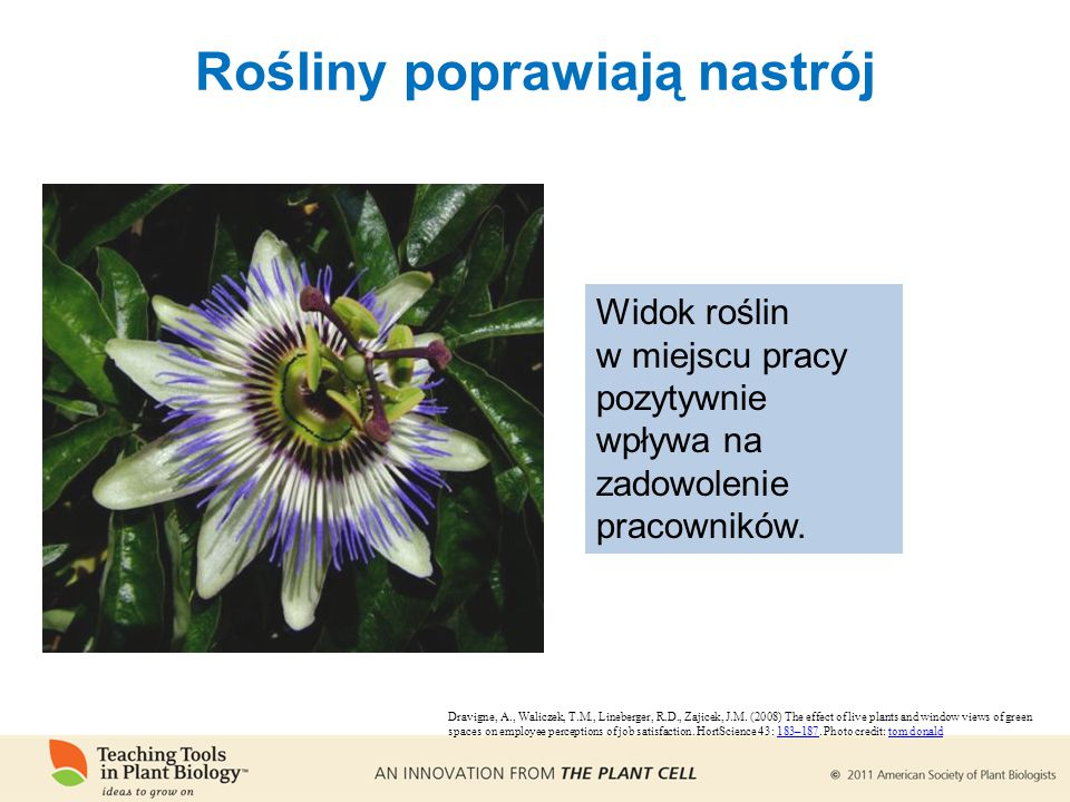 Rośliny poprawiają nastrój Dravigne, A., Waliczek, T.M., Lineberger, R.D., Zajicek, J.M. (2008) The effect of live plants and window views of green sp