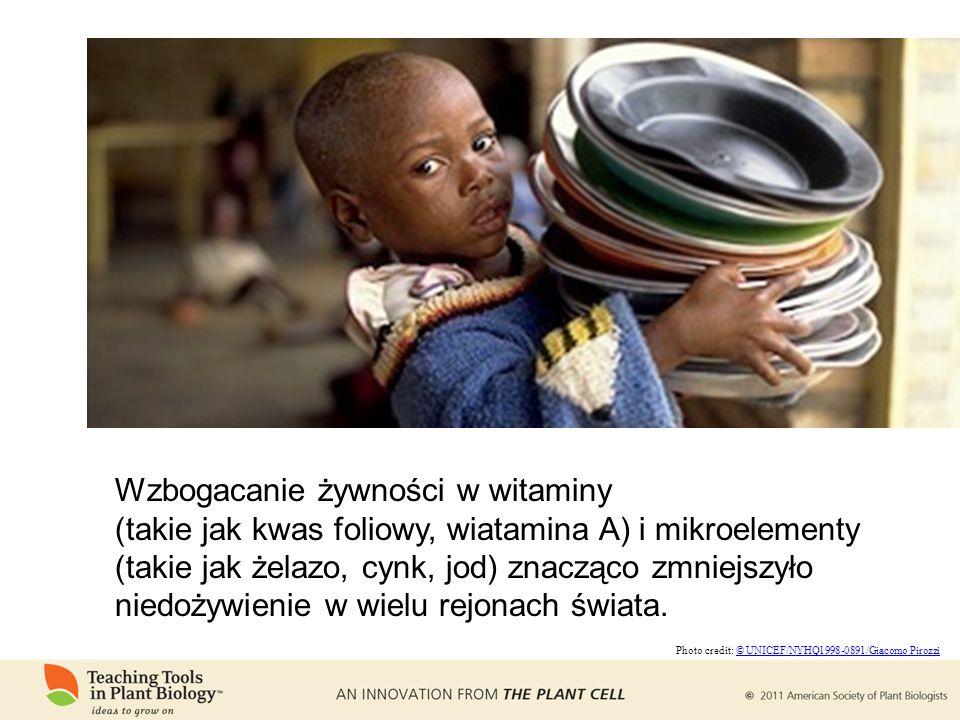 Wzbogacanie żywności w witaminy (takie jak kwas foliowy, wiatamina A) i mikroelementy (takie jak żelazo, cynk, jod) znacząco zmniejszyło niedożywienie w wielu rejonach świata.